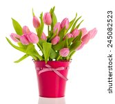 Pink And White Tulips In Bucket ...