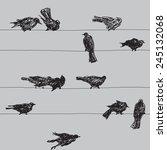 birds pattern. vector seamless  ... | Shutterstock .eps vector #245132068