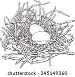 Pigeon's Nest With A Pair Of...