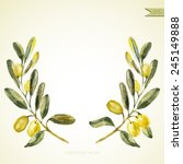 watercolor olive branch wreath. ... | Shutterstock .eps vector #245149888