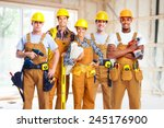 group of professional... | Shutterstock . vector #245176900