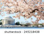 Cherry Blossom Festival At...