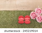 ring in red box | Shutterstock . vector #245219014