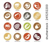 web icons collection   nuts ... | Shutterstock .eps vector #245252203
