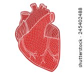 human heart hand drawn isolated ... | Shutterstock .eps vector #245402488