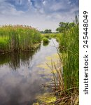Landscape Of A River With Tall...