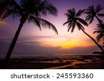 palm tree silhouette on sunset... | Shutterstock . vector #245593360