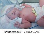 cute newborn baby | Shutterstock . vector #245650648