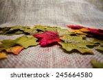 autumn leaves | Shutterstock . vector #245664580