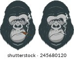 monkey with a cigarette | Shutterstock .eps vector #245680120