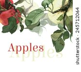 Watercolor Apples With Leaves....