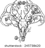 black and white deer skull with ... | Shutterstock .eps vector #245738620