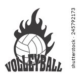 volleyball ball design  vector... | Shutterstock .eps vector #245792173