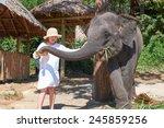 Teen Girl Feeding Elephant Cal...