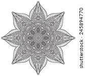 mandala. vintage decorative... | Shutterstock .eps vector #245894770