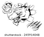 an illustration of a boar... | Shutterstock . vector #245914048
