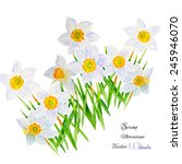 background with narcissus... | Shutterstock .eps vector #245946070