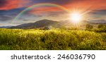 composite mountain landscape. wild flowers on meadow in mountains in sunset light with rainbow - stock photo