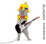 funny cat with electric guitar | Shutterstock . vector #246056728