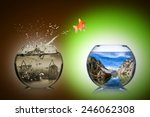 fish rethink and change concept  | Shutterstock . vector #246062308