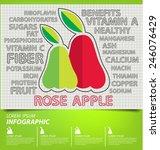 rose apple  infographics....   Shutterstock .eps vector #246076429
