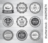 vintage labels template set.... | Shutterstock .eps vector #246090874