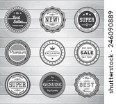vintage labels template set.... | Shutterstock .eps vector #246090889
