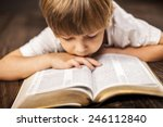 Little Boy Studying The...