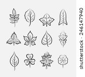 set of twelve different types... | Shutterstock .eps vector #246147940