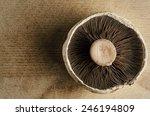 A Large  Open Cap Mushroom On...