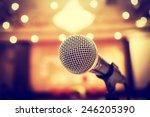 microphone in concert hall or... | Shutterstock . vector #246205390