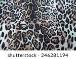 textiles leopard | Shutterstock . vector #246281194
