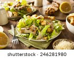 healthy grilled chicken caesar... | Shutterstock . vector #246281980
