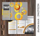 gray brochure template design... | Shutterstock .eps vector #246293254