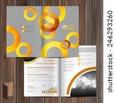 gray brochure template design... | Shutterstock .eps vector #246293260
