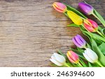 Bouquet Of Colorful Tulips On...