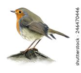 Digital Illustration Of A Robin