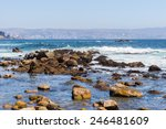 nature of the chilean coast of... | Shutterstock . vector #246481609