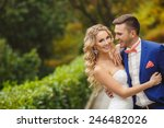 bride and groom at wedding day... | Shutterstock . vector #246482026
