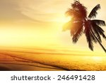 sunset at a tropical beach in... | Shutterstock . vector #246491428