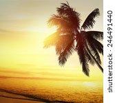 sunset at a tropical beach in... | Shutterstock . vector #246491440