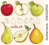 bright vector illustration of... | Shutterstock .eps vector #246522943