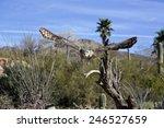 astonishing great horned owl... | Shutterstock . vector #246527659