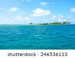 Beautiful view of caribbean sea and Palm Tree tropical island.