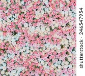 flower bouquets   bunch of... | Shutterstock . vector #246547954