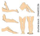 women legs | Shutterstock .eps vector #246603136
