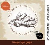 ginger root illustration.... | Shutterstock .eps vector #246608596