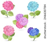 collection of flowers  hydrangea | Shutterstock .eps vector #246630784