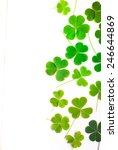 Bear Clover Leaf Green ...
