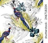 pheasant animals birds in... | Shutterstock .eps vector #246718204
